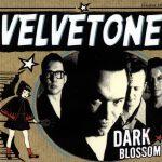 Dark Blossom – CD – 2001